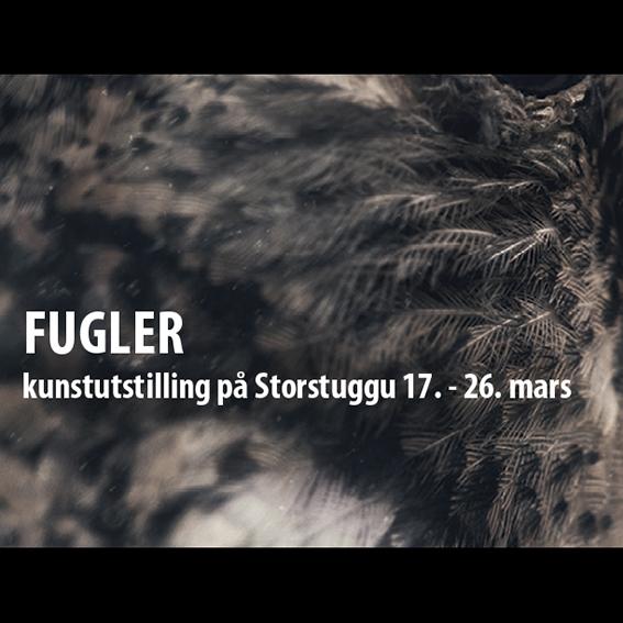 Fugler – kunstutstilling Storstuggu